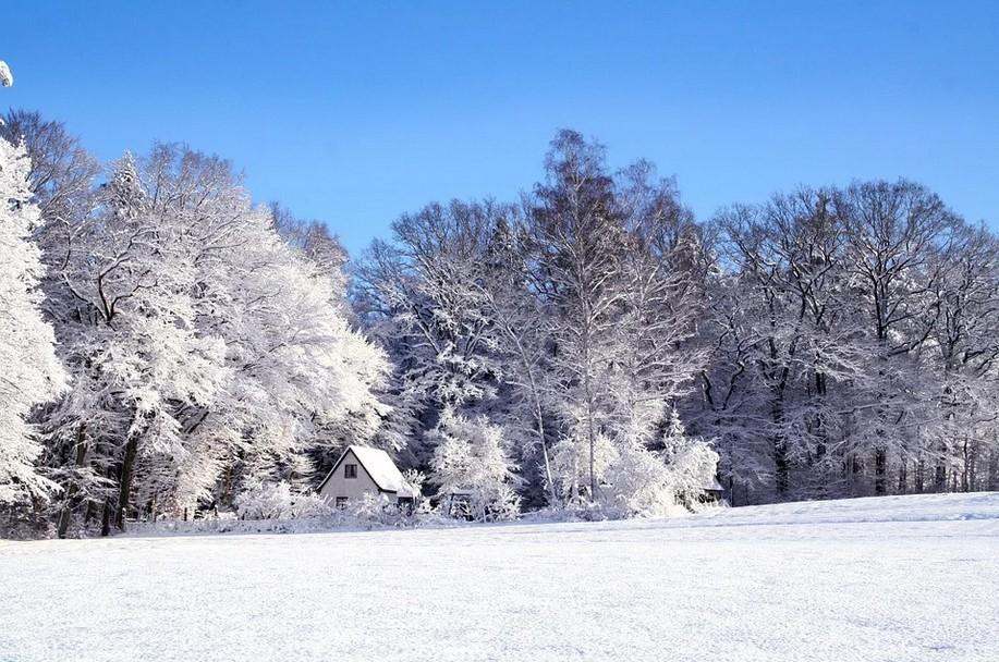 Красивые картинки «Зимушка зима» (35 фото)