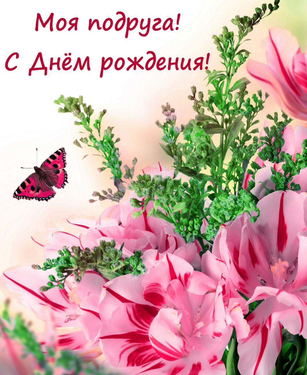 Прикольные картинки «С днем рождения подруга»