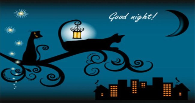 Картинки «Спокойной ночи, любимая!» (39 фото)