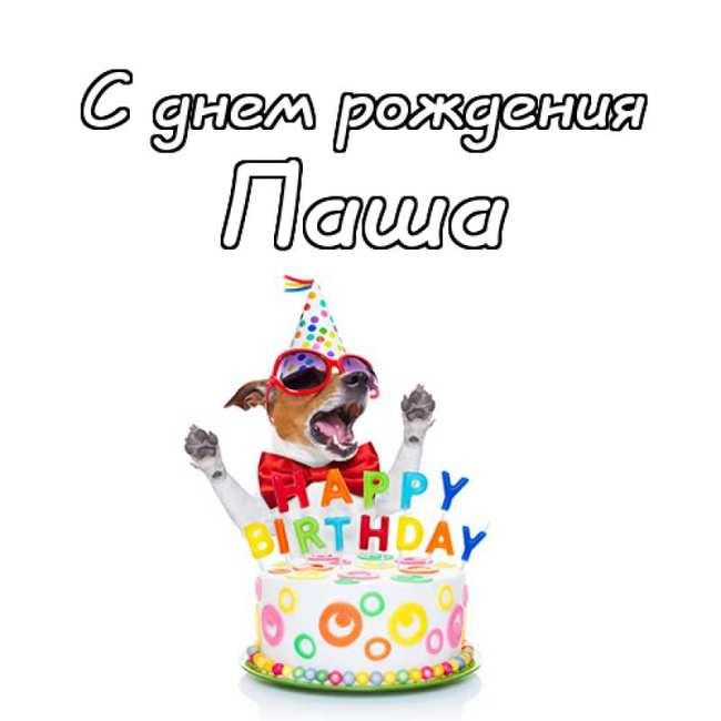 Прикольные картинки «С днем рождения Паша»