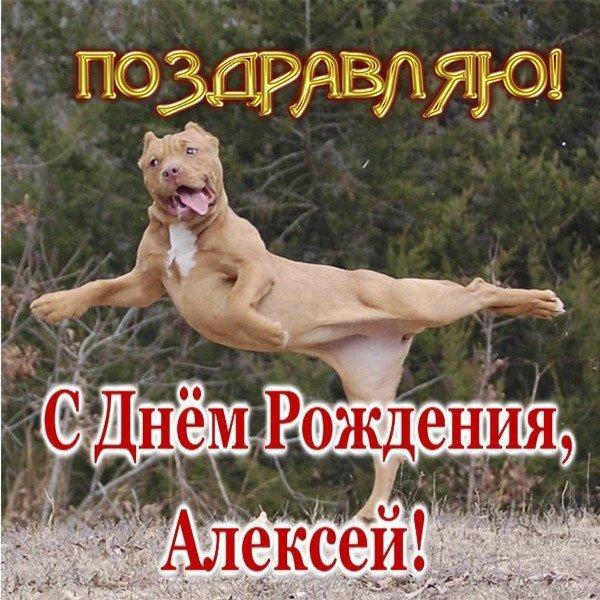 Прикольные картинки «С днем рождения Алексей»