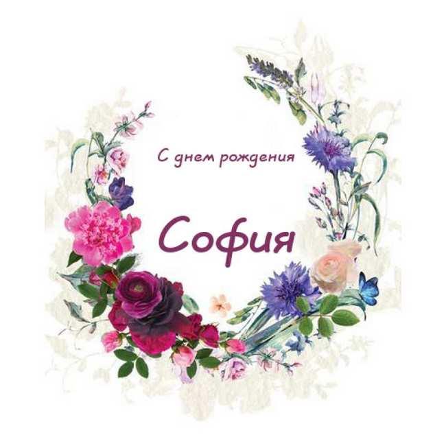 Прикольные картинки «С днем рождения София»