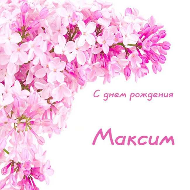 Прикольные картинки «С днем рождения Максим»